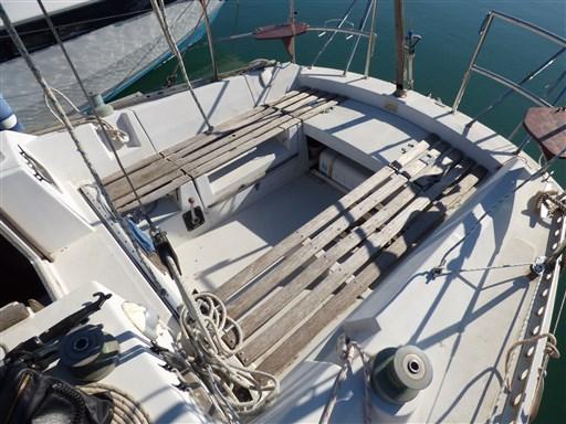 Gib Sea 31 1