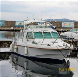 Eider Marine Fish Rover 860 (1995)